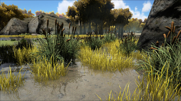 In this image you see one of the types of bushes on the Ark where you can find a rare Plant Species X seed drop. It is located in the Swamp Biome.