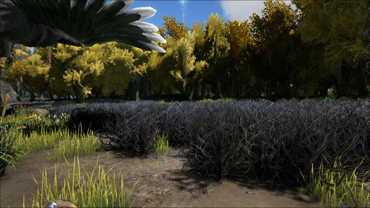This image shows one set of bushes that can provide Rare Flower drops in the swamps on the Ark.