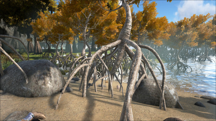 This image shows one of the types of trees on the Ark that can provide Rare Mushrooms.