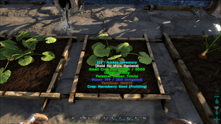 Narcoberries can be grown in any size Crop Plot in Ark. In this image the Narcoberrries are growing in a Small Crop Plot.