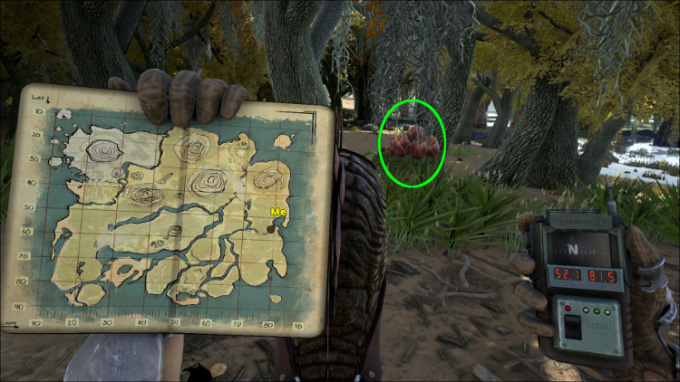 This image shows a wild Plant Species X with Map Location on the Ark at 52.1 - 81.5.
