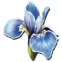 Rare Flowers are found in very few areas on the Ark. They are used in some of the Rockwell Recipes.