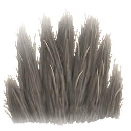 Pelts are harvested from a select few creatures in Ark, and are used in a few crafting projects.