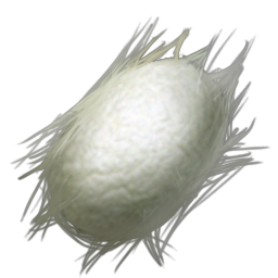 Silk is a common resource used in crafting in Ark Scorched Earth.